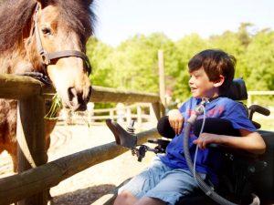 Kind in Rollstuhl mit Beatmungsgerät schaut lachend auf ein Pferd, das sich zu ihm beugt.
